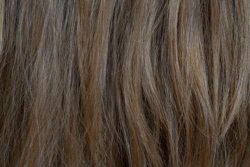 Hair Medium Blonde Blond Nature Human Hair Female