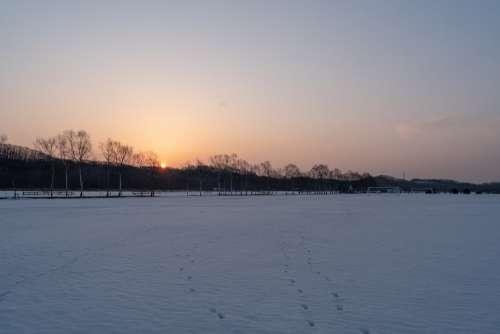 Hokkaido Sunrise Snow Winter Sun Landscape