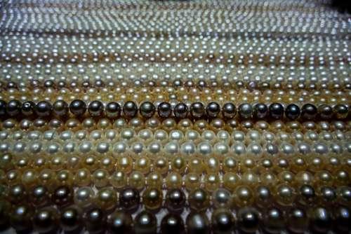 Jewelry Precious Gem Luxury Fashion Jewel Sparkle