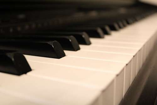 Keyboard Piano Keys Music