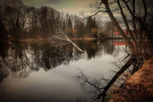 Lake Pond Water Nature Waters Bank Landscape