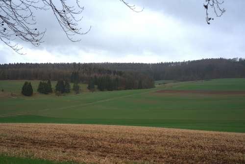 Landscape Field Meadow Elbe Mountain Sky Green