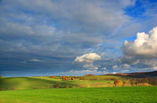 Landscape Field Vosges Nature Rural Sky Summer