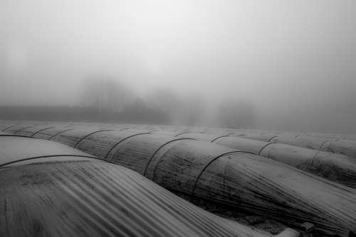 Landscape Mist Fog Silhouette Nature Field Misty