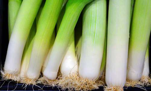Leek Vegetables Fresh Bio Food