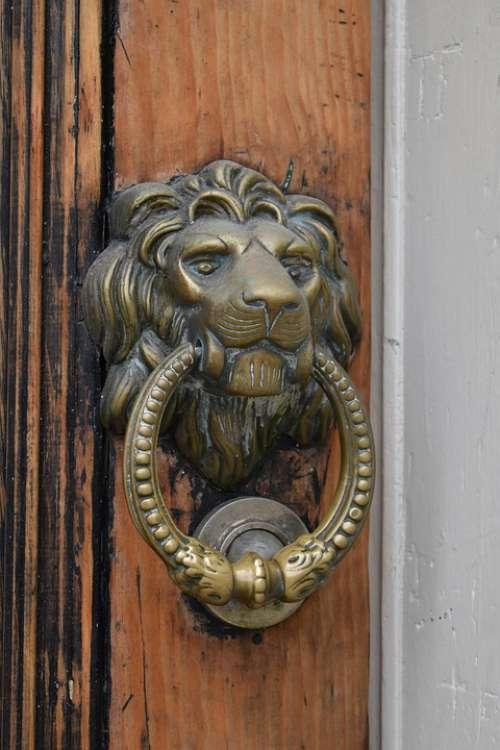 Lion Door Doorknocker Old Metal Wood Handle