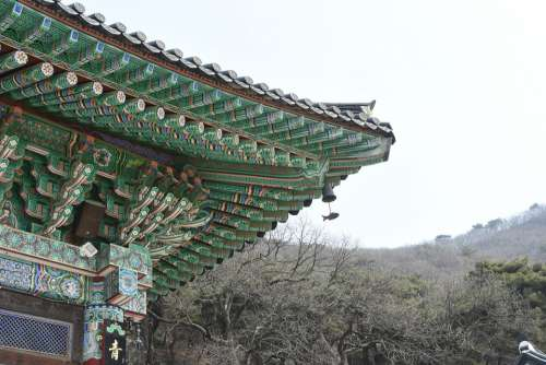 Mono Splendor Architecture Color
