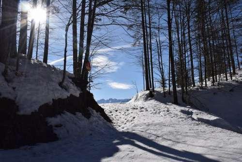 Mountain Summit Mountains Landscape Alpine Nature