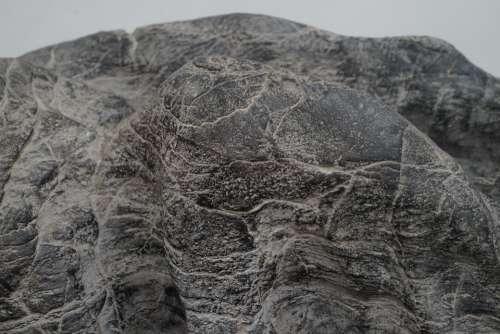 Natural Rock Formation Close-Up Geology Evolution