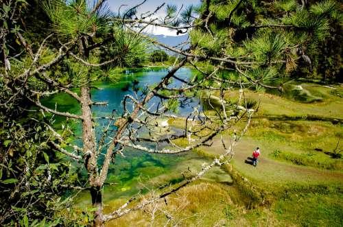 Nature Lagoon Paradise Water Landscape Travel