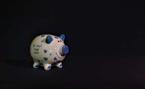 Piggy Bank Savings Cash Bank Pig Profit Money