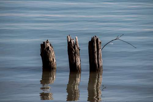Piles Water Wood Wooden Posts Waters