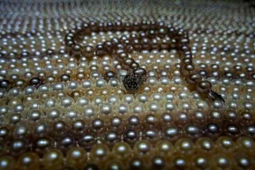 Precious Luxury Gem Gemstone Jewel Sparkle