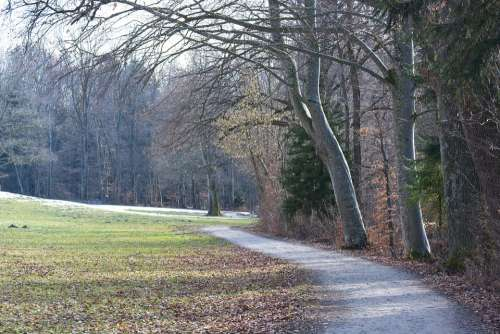Promenade Away Path Autumn Spring Nature Trail