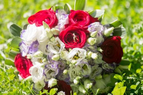 Rings Flowers Ring Flower Bouquet Wedding Love
