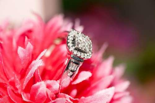 Rings Bridal Wedding Marriage Bride Ring Love