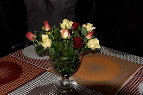 Roses Vase Bouquet Living Room Nature Flower