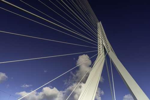 Rotterdam Erasmus Bridge Netherlands Architecture