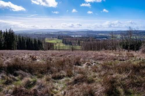 Scotland Trees Landscape Nature Sky Clouds Forest
