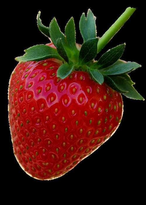 Strawberry Red Fruit Berries Summer Fruits