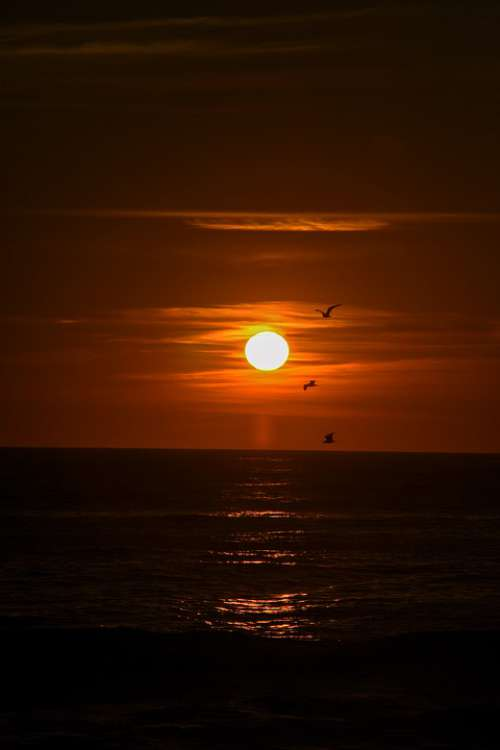 Sunset Sun Sky Landscape Horizon Light Darkness