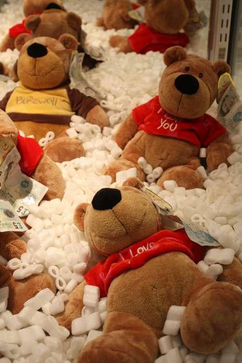Teddy Bear Prize Win Trophy Bear Cuddly Toy Hug