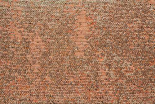 Tiled Roof Tile Roof Pattern Texture Housetop