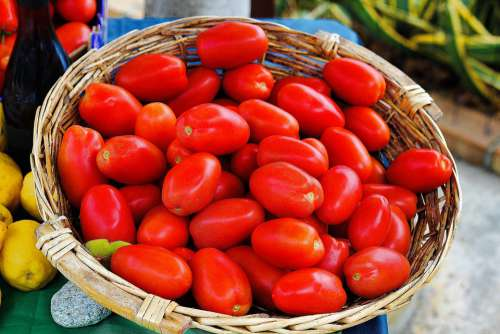 Tomatoes Vegetables Food Red Fresh Healthy