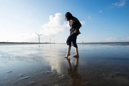 Treading Clams Gold Beach Scenic Area The Sea