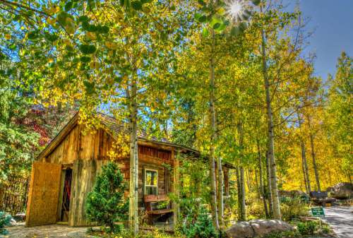 Vail Colorado Foliage Log Cabin Landscape Usa