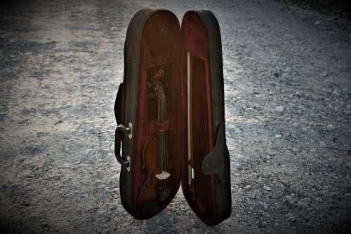 Violin Instrument Music Orchestra Musician