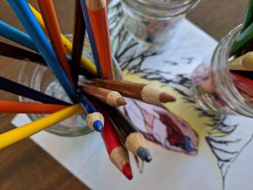 Vulva Coloring Sex Education Positive