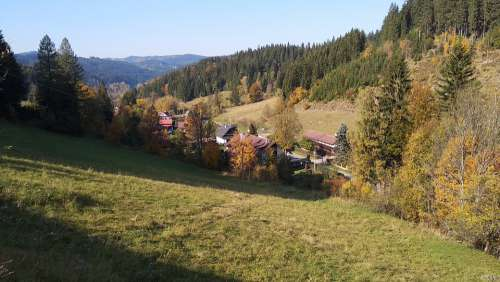 Wallachia Landscape Forest Autumn Sun Trees