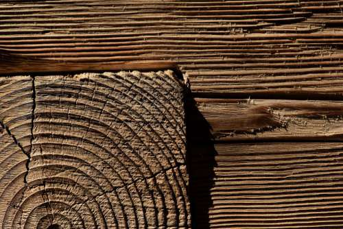 Wood Background Brown Wooden Structure Structure