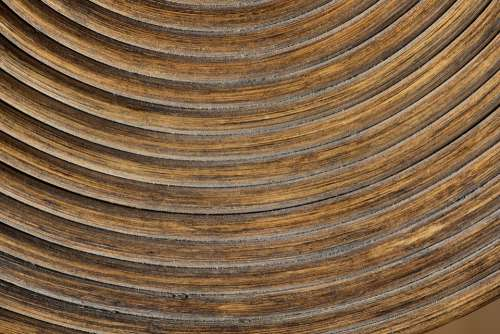 Wood Brown Rings Background Texture Close Up