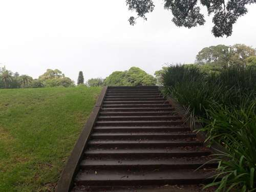 steps stairs park