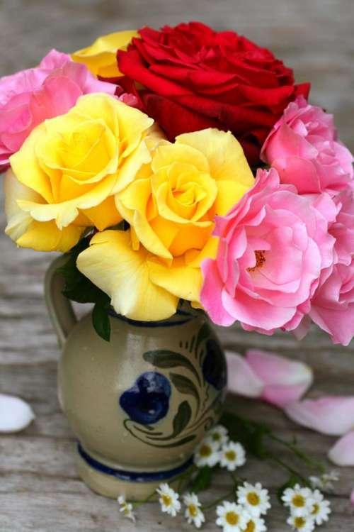 floral  flower  bouquet  rose  roses