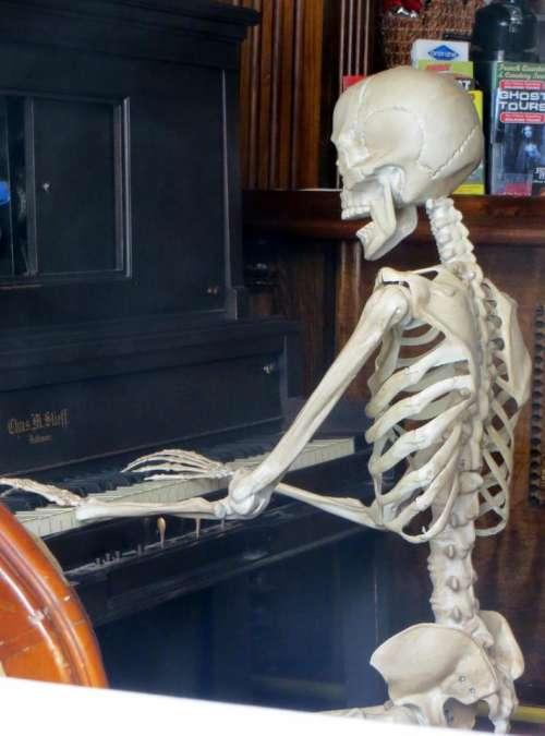 skeleton bones piano piano player jazz