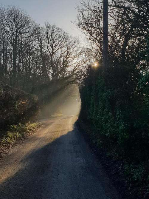 country lane  early morning  sun ray  ray of sunshine