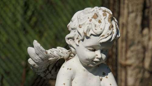 Angel Angel Figure Sculpture Statue Figure