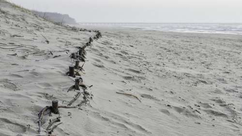 Beach Dunes Sand Path Landscape Coast Nature Sea