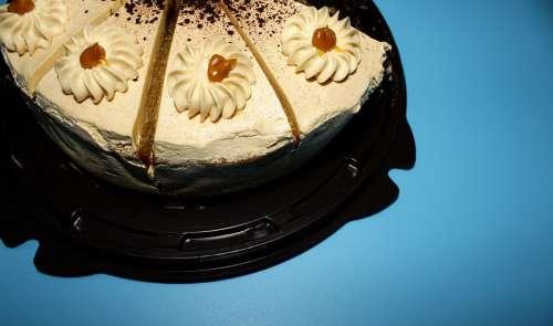 Blue Background Food Cake Portions Sliced Biscuit