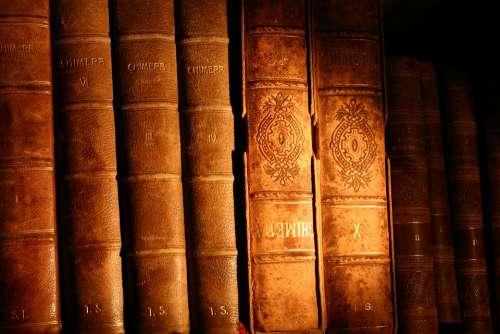 Book Bookstore Library Literature