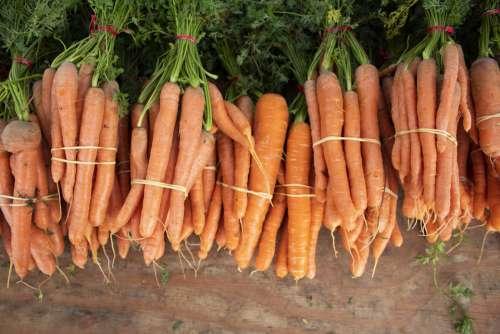 Carrot Vegetable Farmers Market Orange Green