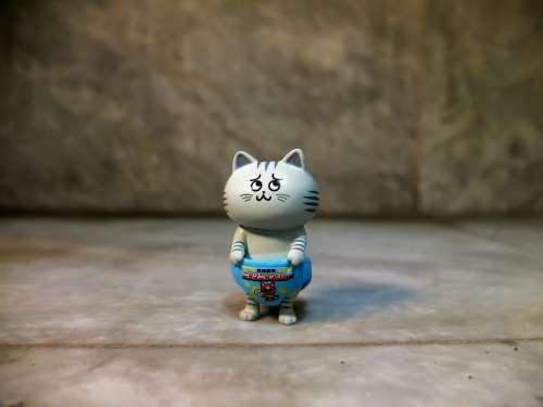 Cat Pet Domestic Small Cute Hero Funny Japanese