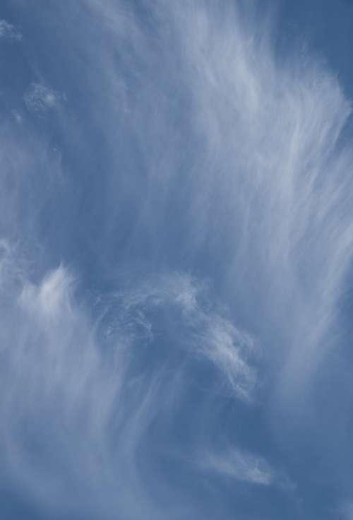 Clouds White Blue Cloudscape Delicate Pattern Sky