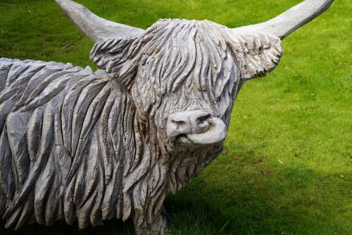 Cow Beef Scotland Highlandrind Sculpture Wood