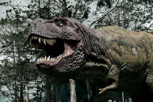 Dinosaur Cretaceous Paleontology Prehistoric Giant
