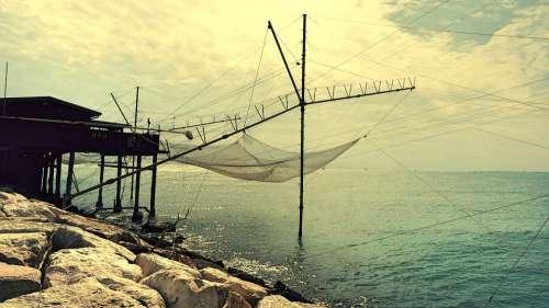 Fishing Fish Sea Sunset Water Fisherman Blue