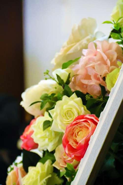 Flowers Wedding Roses Floral Celebration Petal